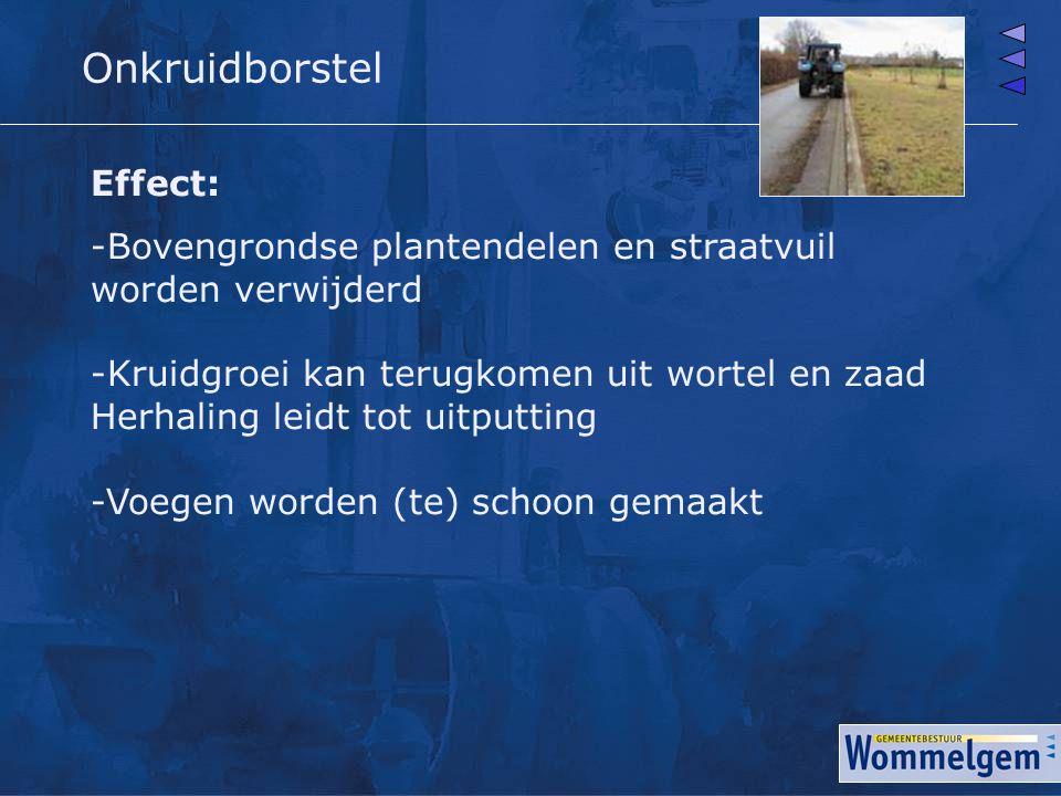 Onkruidborstel Effect: -Bovengrondse plantendelen en straatvuil worden verwijderd -Kruidgroei kan terugkomen uit wortel en zaad Herhaling leidt tot ui