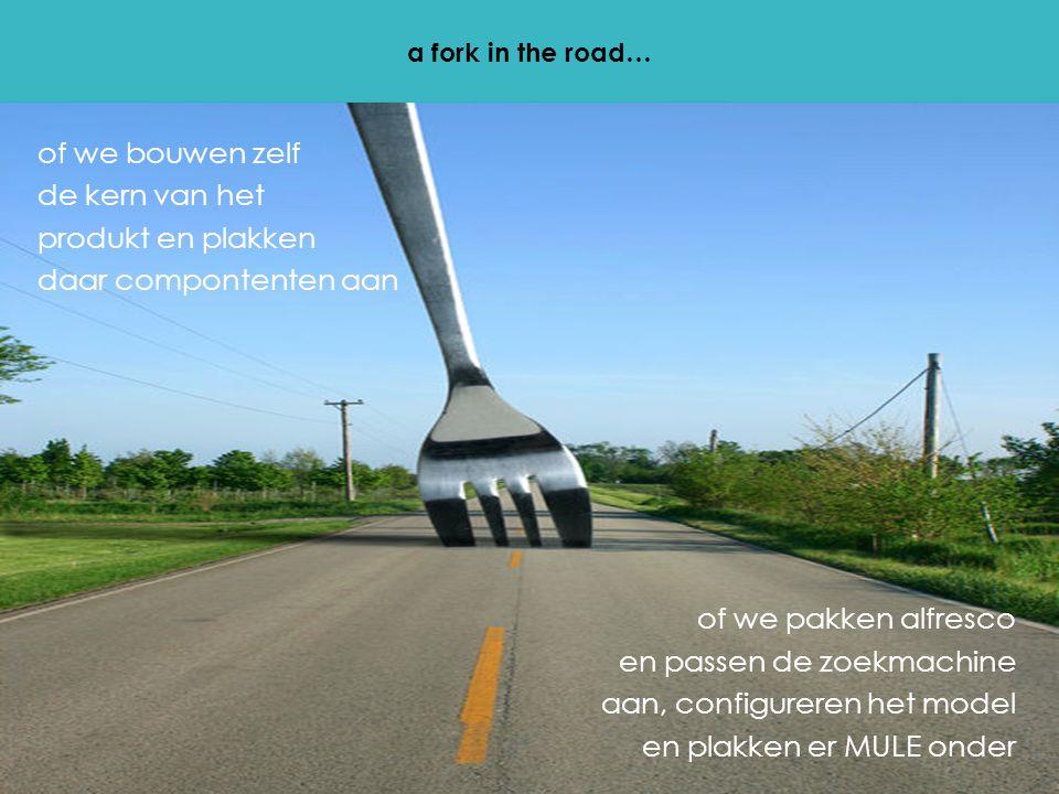 a fork in the road… of we bouwen zelf de kern van het produkt en plakken daar compontenten aan of we pakken alfresco en passen de zoekmachine aan, configureren het model en plakken er MULE onder
