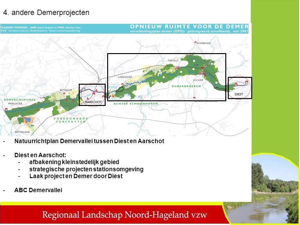-Natuurrichtplan Demervallei tussen Diest en Aarschot -Diest en Aarschot: -afbakening kleinstedelijk gebied -strategische projecten stationsomgeving -