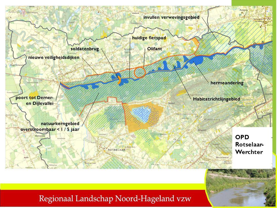 invullen verwevingsgebied hermeandering huidige fietspad Habitatrichtlijngebied poort tot Demer- en Dijlevallei nieuwe veiligheidsdijken OPD Rotselaar
