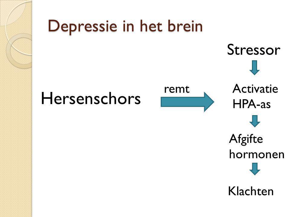 Depressie in het brein Stressor Activatie HPA-as Afgifte hormonen Klachten Hersenschors remt