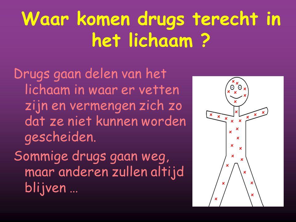 Waar komen drugs terecht in het lichaam ? Drugs gaan delen van het lichaam in waar er vetten zijn en vermengen zich zo dat ze niet kunnen worden gesch