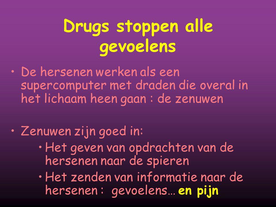 Drugs stoppen alle gevoelens De hersenen werken als een supercomputer met draden die overal in het lichaam heen gaan : de zenuwen Zenuwen zijn goed in