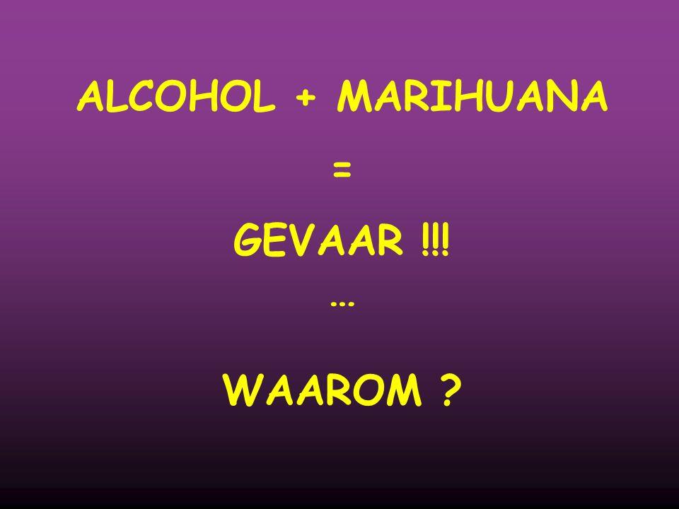ALCOHOL + MARIHUANA = GEVAAR !!! … WAAROM