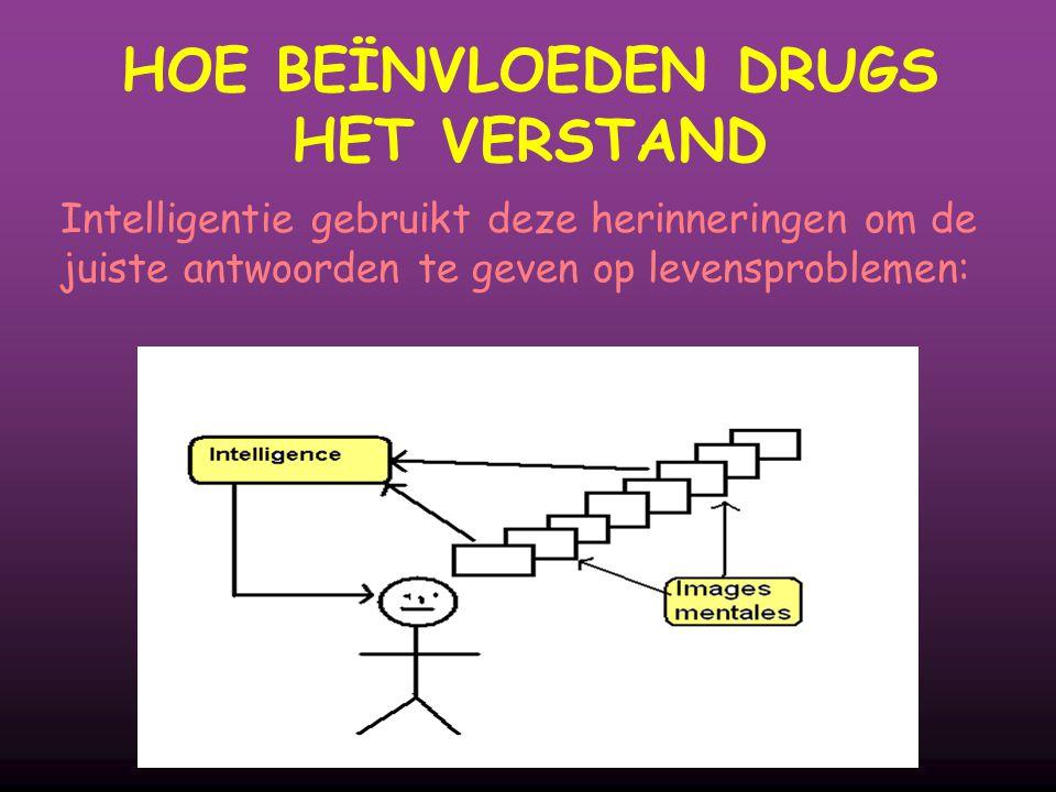 Intelligentie gebruikt deze herinneringen om de juiste antwoorden te geven op levensproblemen: HOE BEÏNVLOEDEN DRUGS HET VERSTAND