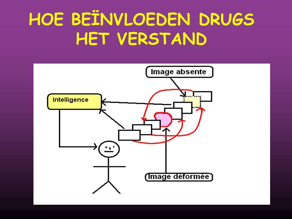 HOE BEÏNVLOEDEN DRUGS HET VERSTAND