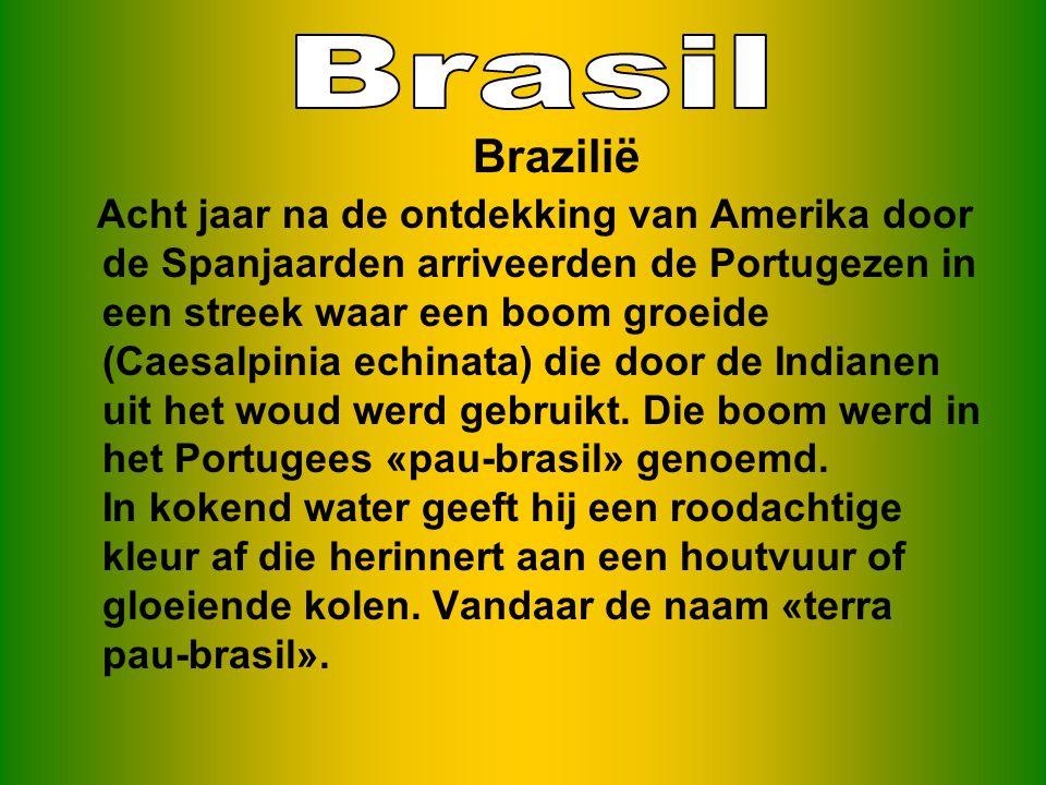 Acht jaar na de ontdekking van Amerika door de Spanjaarden arriveerden de Portugezen in een streek waar een boom groeide (Caesalpinia echinata) die door de Indianen uit het woud werd gebruikt.