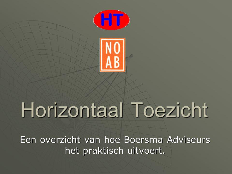 Horizontaal Toezicht Een overzicht van hoe Boersma Adviseurs het praktisch uitvoert.