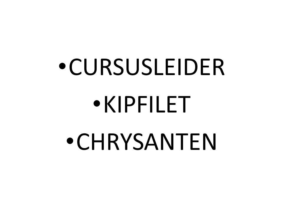 CURSUSLEIDER KIPFILET CHRYSANTEN
