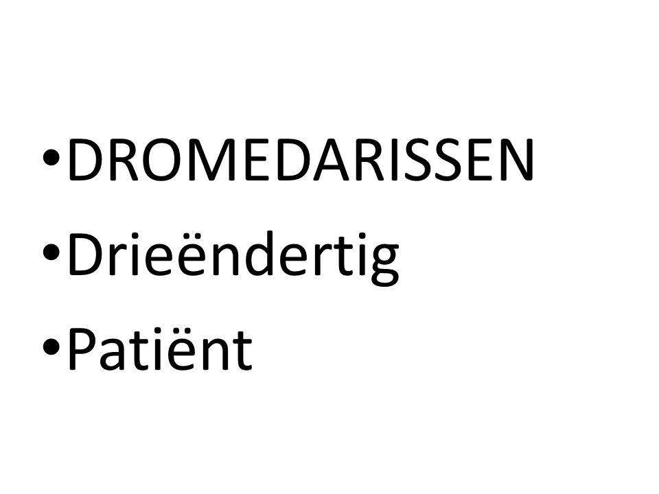 DROMEDARISSEN Drieëndertig Patiënt