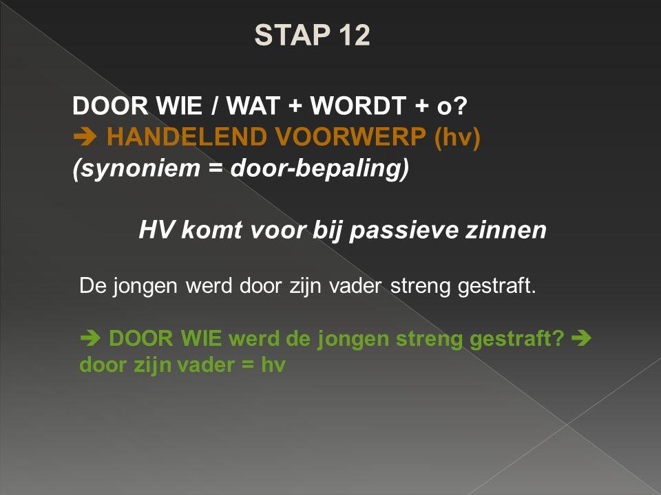 STAP 12 DOOR WIE / WAT + WORDT + o?  HANDELEND VOORWERP (hv) (synoniem = door-bepaling) HV komt voor bij passieve zinnen De jongen werd door zijn vad