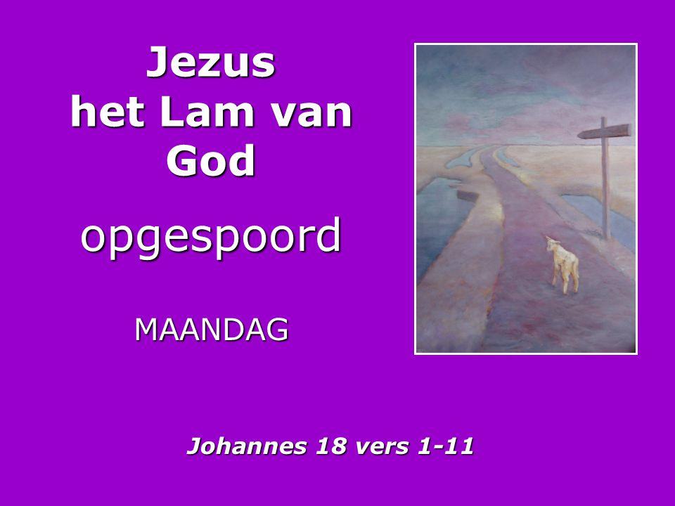 Jezus het Lam van God opgespoordMAANDAG Johannes 18 vers 1-11