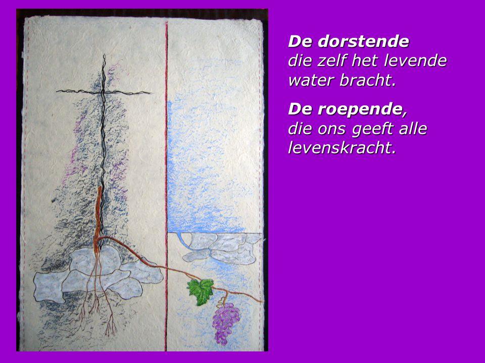 Kruistocht naar het kruis Jolanda Vlastuin-van Deelen k Was vroeger bang om zomaar om te komen k was bang om zonder God van hier te gaan k kon van het hemellicht alleen maar dromen totdat ik t kruis, het ruwe kruis zag staan.
