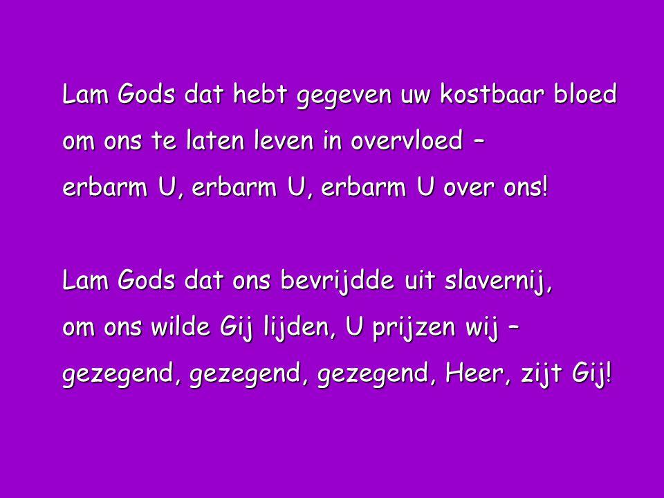Lam Gods dat hebt gegeven uw kostbaar bloed om ons te laten leven in overvloed – erbarm U, erbarm U, erbarm U over ons! Lam Gods dat ons bevrijdde uit