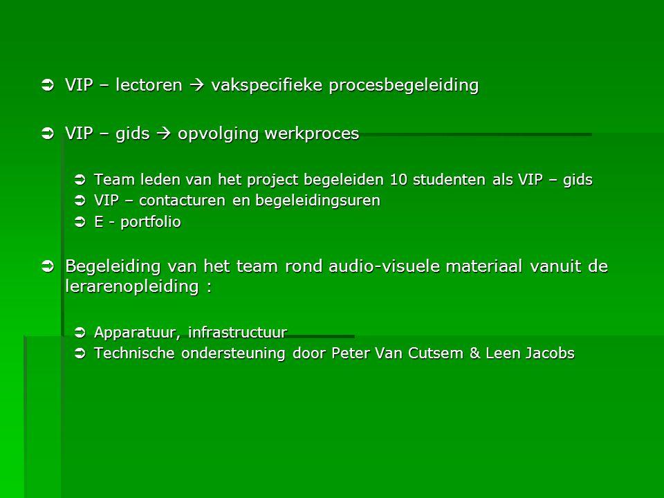  VIP – lectoren  vakspecifieke procesbegeleiding  VIP – gids  opvolging werkproces  Team leden van het project begeleiden 10 studenten als VIP –