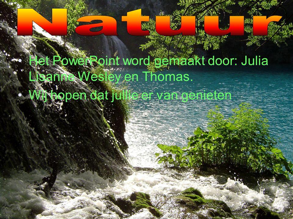 Het PowerPoint word gemaakt door: Julia Lisanne Wesley en Thomas.