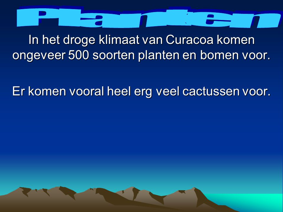 Honden en katten mogen vanuit Nederland mee naar Curacoa.