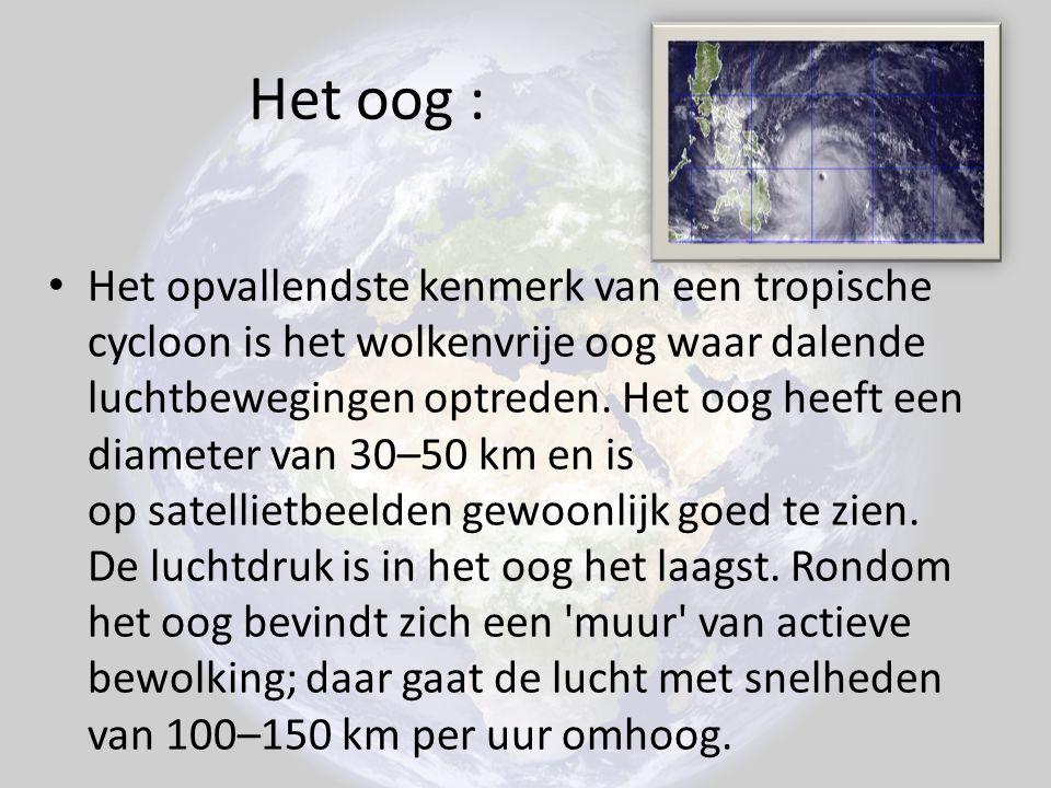 Het oog : Het opvallendste kenmerk van een tropische cycloon is het wolkenvrije oog waar dalende luchtbewegingen optreden. Het oog heeft een diameter
