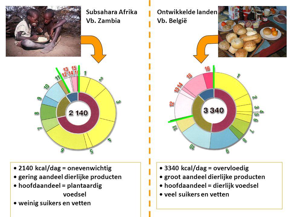 2140 kcal/dag = onevenwichtig gering aandeel dierlijke producten hoofdaandeel = plantaardig voedsel weinig suikers en vetten 3340 kcal/dag = overvloed