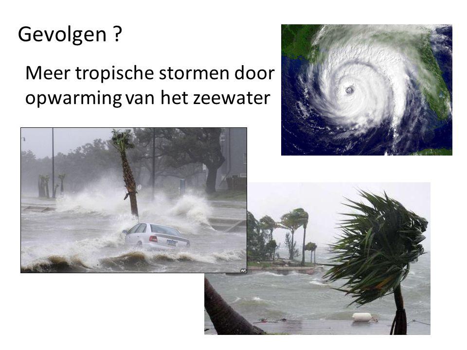 Gevolgen ? Meer tropische stormen door opwarming van het zeewater