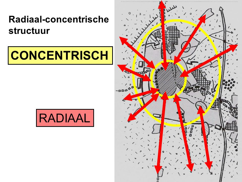 Radiaal-concentrische structuur CONCENTRISCH RADIAAL