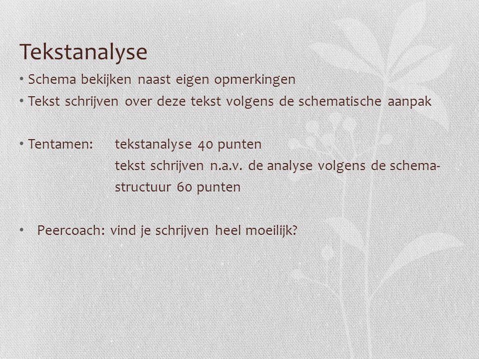 Tekstanalyse Schema bekijken naast eigen opmerkingen Tekst schrijven over deze tekst volgens de schematische aanpak Tentamen: tekstanalyse 40 punten t