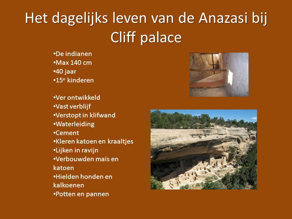 Het dagelijks leven van de Anazasi bij Cliff palace De indianen Max 140 cm 40 jaar 15 e kinderen Ver ontwikkeld Vast verblijf Verstopt in klifwand Wat