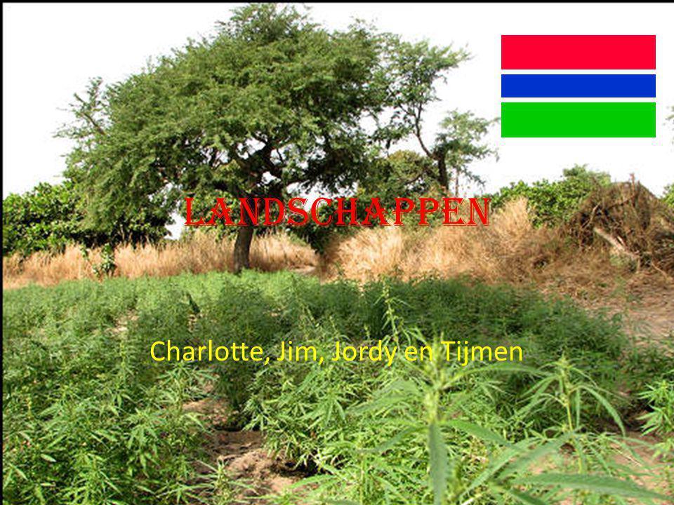 Welke verschillende landschappen zijn er in Gambia.