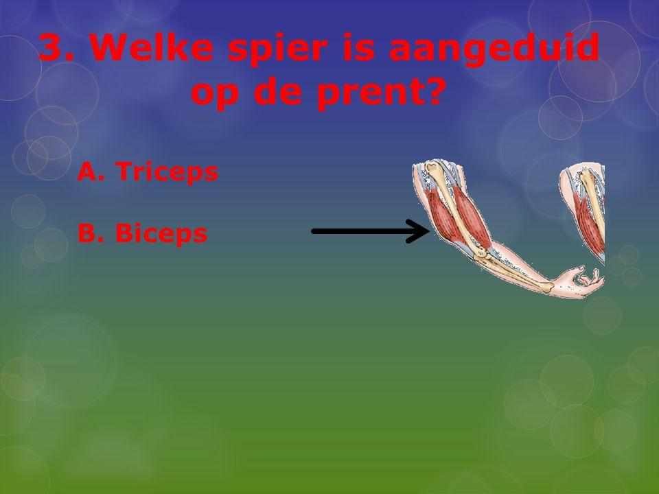 3. Welke spier is aangeduid op de prent? A. Triceps B. Biceps