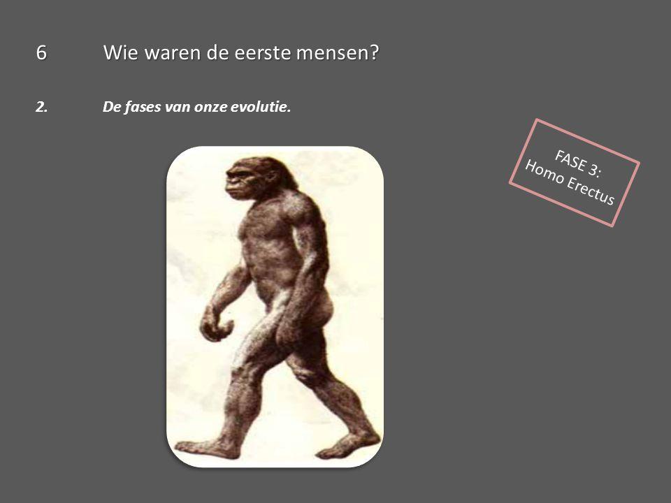 6Wie waren de eerste mensen? 2. De fases van onze evolutie. FASE 3: Homo Erectus
