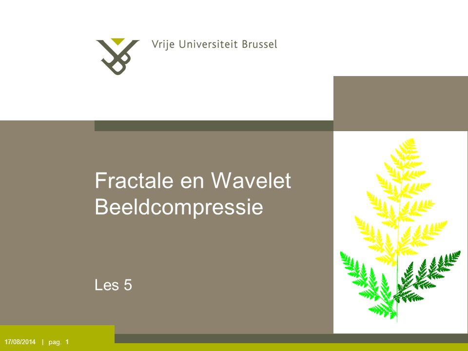 17/08/2014 | pag. 1 Fractale en Wavelet Beeldcompressie Les 5