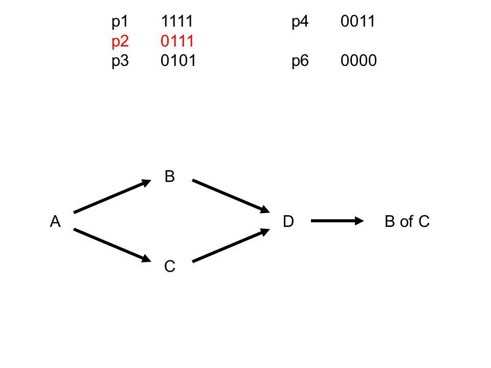 p11111 p20111 p30101 p40011 p60000 AD B C B of C