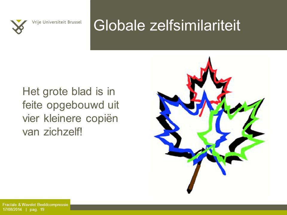 Fractale & Wavelet Beeldcompressie 17/08/2014 | pag. 19 Globale zelfsimilariteit Het grote blad is in feite opgebouwd uit vier kleinere copiën van zic