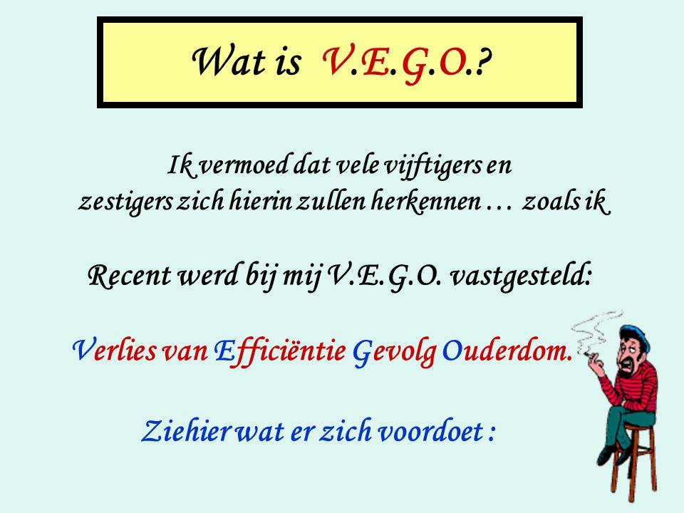 Wat is V.E.G.O..