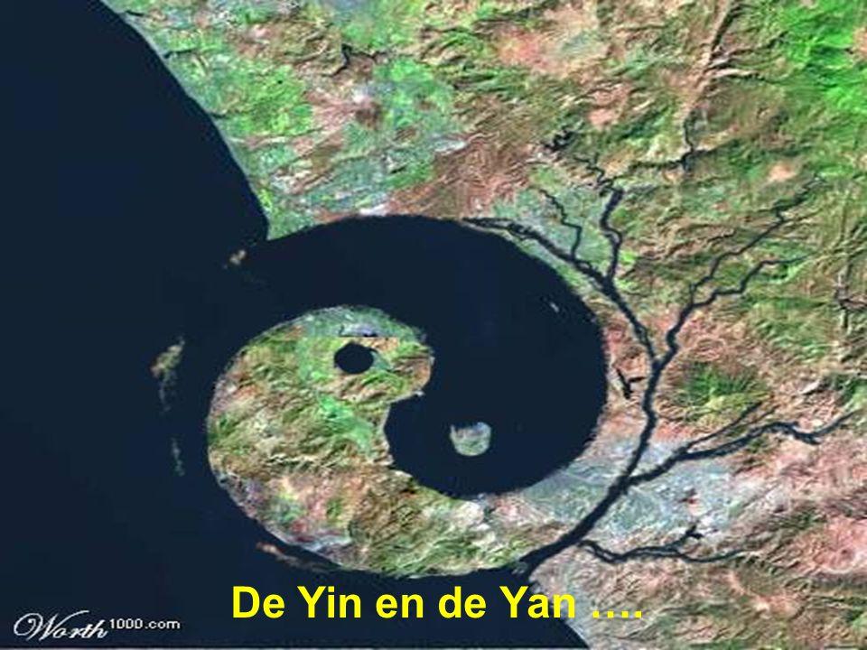 De Yin en de Yan ….