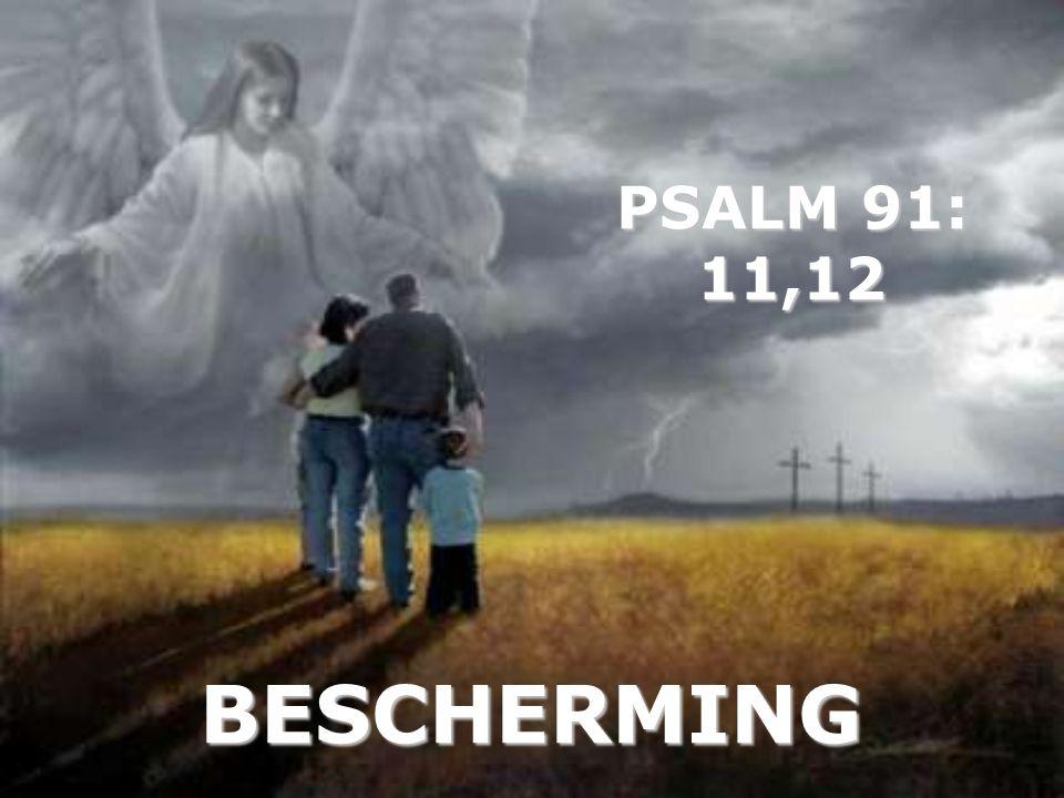 BESCHERMING PSALM 91: 11,12