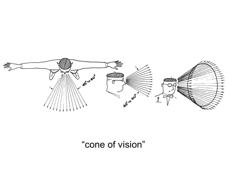 """cone of vision"""