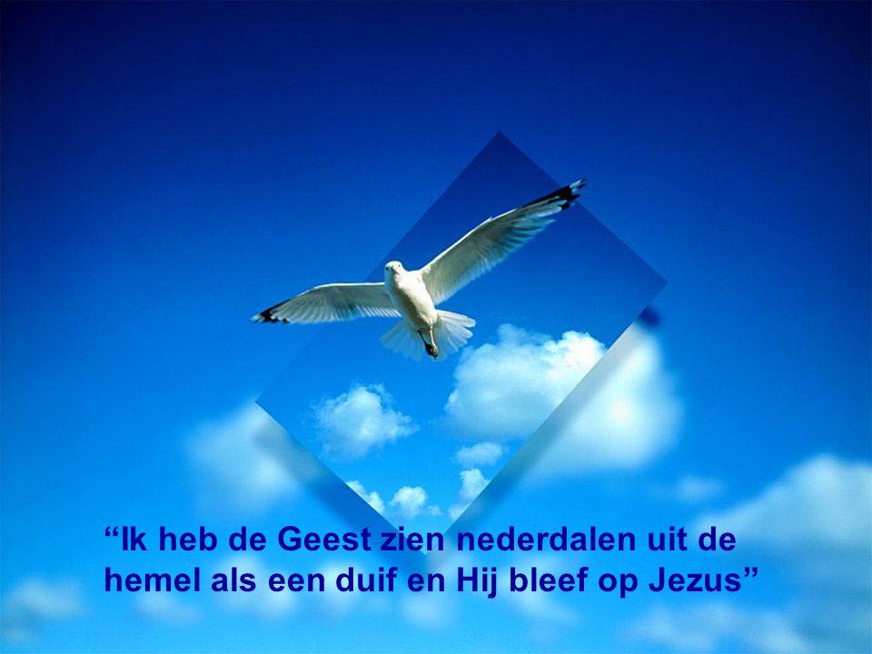 """""""Ik heb de Geest zien nederdalen uit de hemel als een duif en Hij bleef op Jezus"""""""