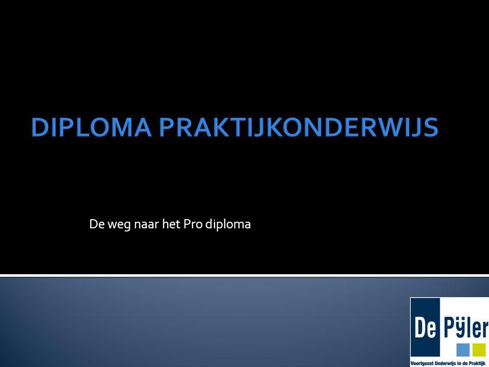 De weg naar het Pro diploma