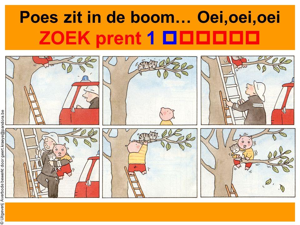 © Uitgeverij Averbode bewerkt door geert.kraeye@pandora.be KIJK GOED naar de prenten 123 456