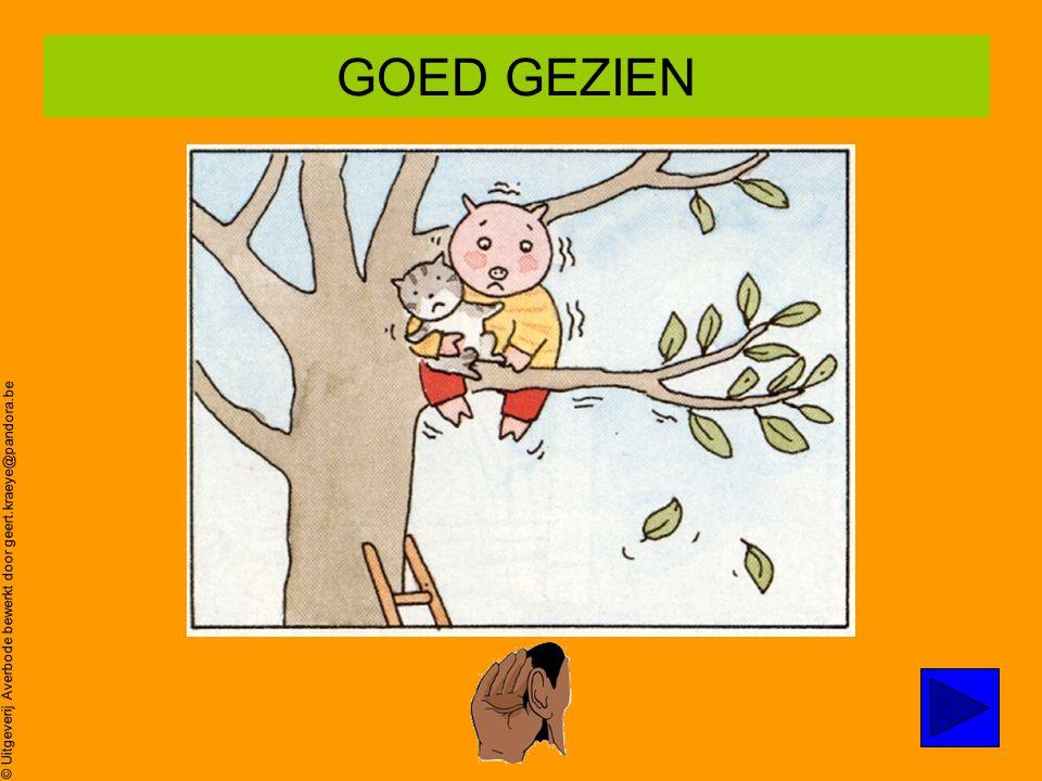© Uitgeverij Averbode bewerkt door geert.kraeye@pandora.be Poes zit in de boom… Oei,oei,oei ZOEK prent 3 