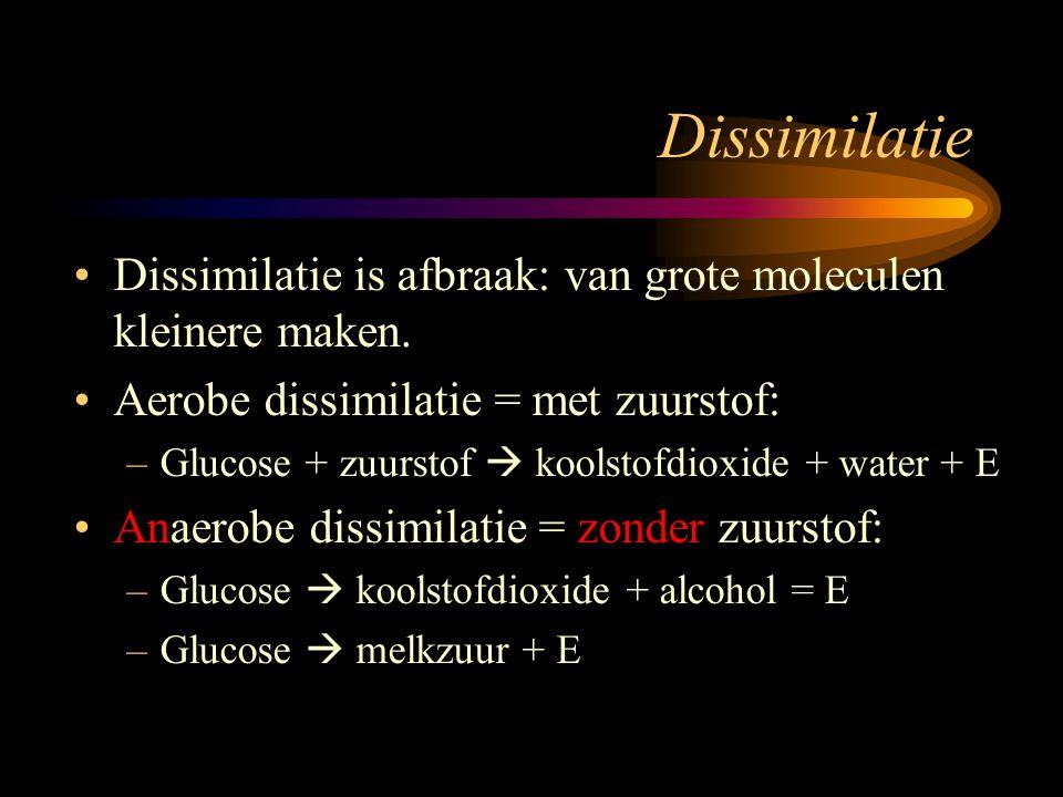 Dissimilatie Dissimilatie is afbraak: van grote moleculen kleinere maken. Aerobe dissimilatie = met zuurstof: –Glucose + zuurstof  koolstofdioxide +