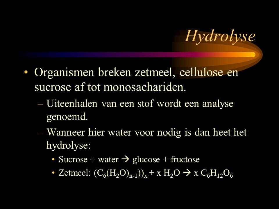 Hydrolyse Organismen breken zetmeel, cellulose en sucrose af tot monosachariden. –Uiteenhalen van een stof wordt een analyse genoemd. –Wanneer hier wa