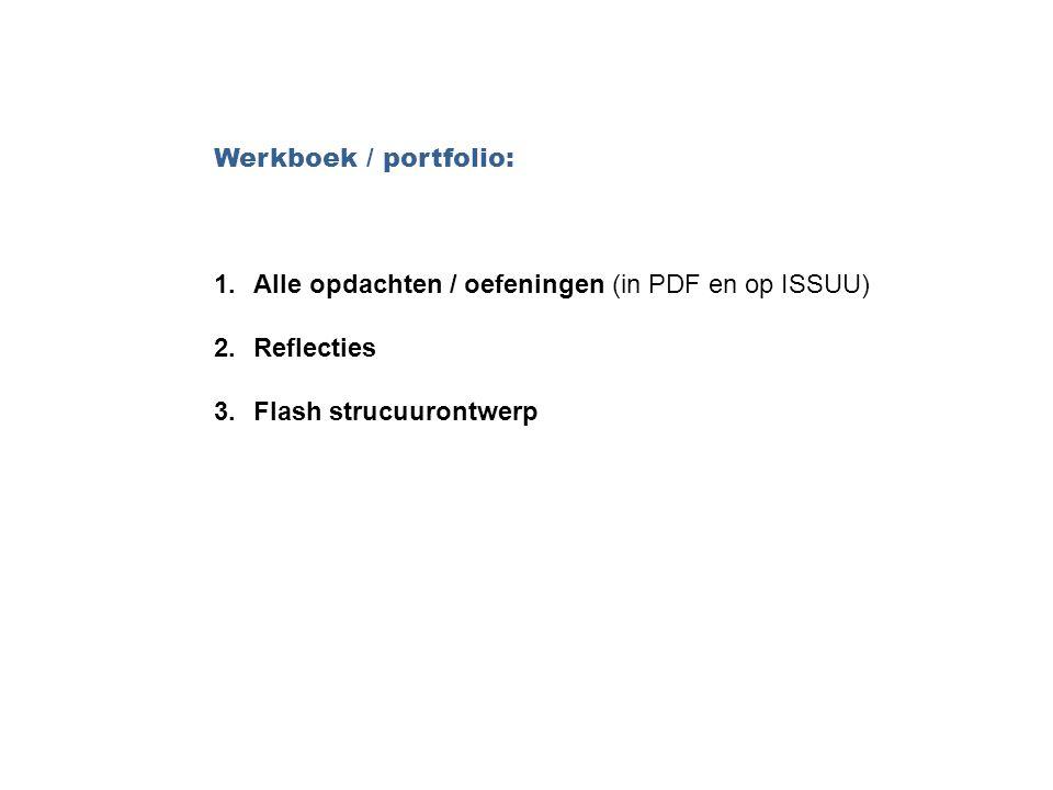 Werkboek / portfolio: 1.Alle opdachten / oefeningen (in PDF en op ISSUU) 2.Reflecties 3.Flash strucuurontwerp
