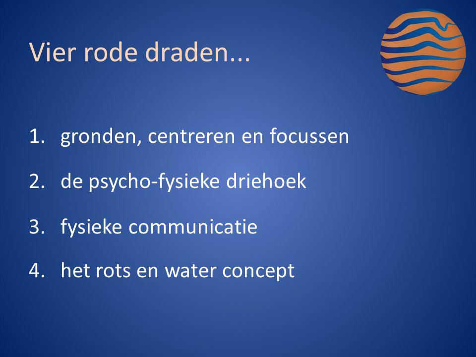 1.gronden, centreren en focussen 2.de psycho-fysieke driehoek 3.fysieke communicatie 4.het rots en water concept Vier rode draden...