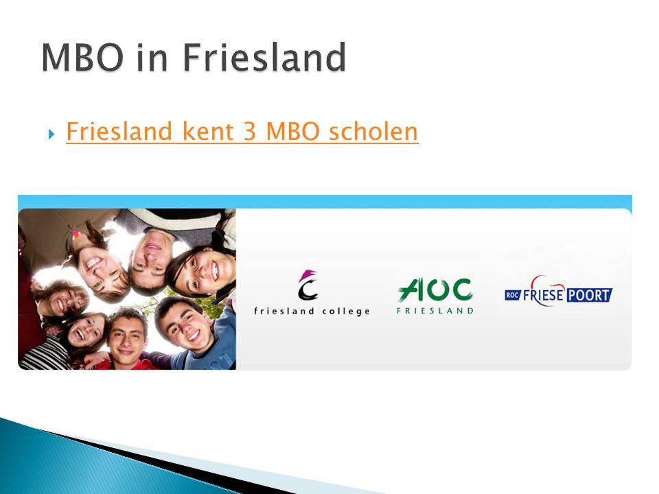  Friesland kent 3 MBO scholen Friesland kent 3 MBO scholen