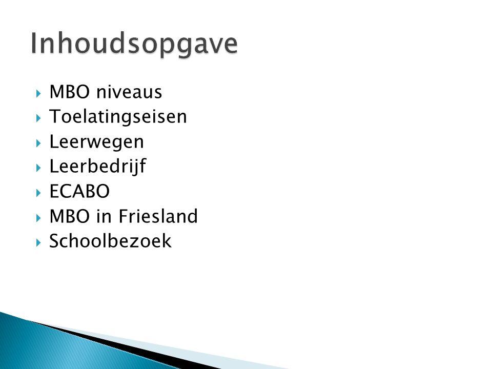  MBO niveaus  Toelatingseisen  Leerwegen  Leerbedrijf  ECABO  MBO in Friesland  Schoolbezoek
