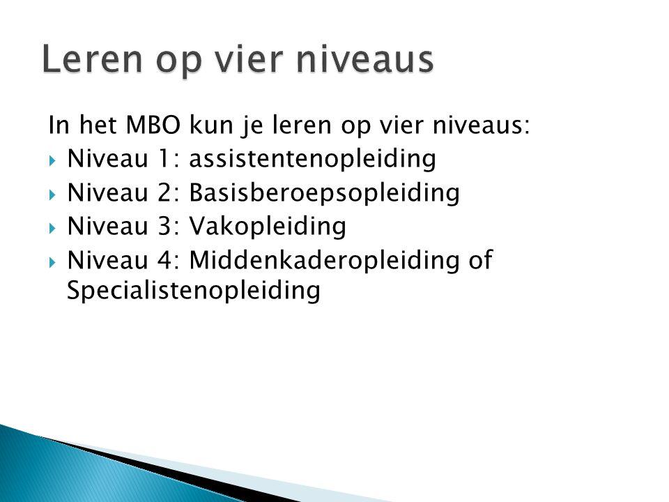 In het MBO kun je leren op vier niveaus:  Niveau 1: assistentenopleiding  Niveau 2: Basisberoepsopleiding  Niveau 3: Vakopleiding  Niveau 4: Midde