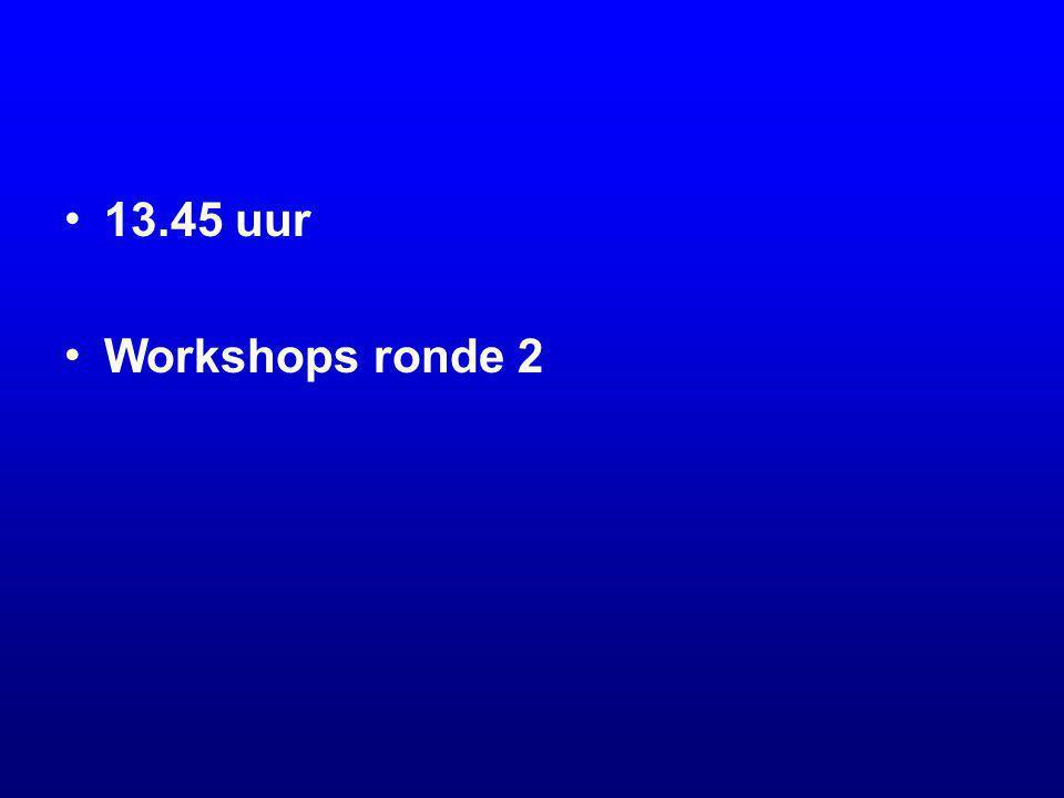 13.45 uur Workshops ronde 2