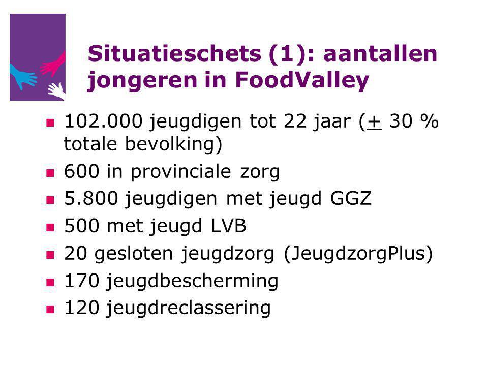 Situatieschets (1): aantallen jongeren in FoodValley 102.000 jeugdigen tot 22 jaar (+ 30 % totale bevolking) 600 in provinciale zorg 5.800 jeugdigen met jeugd GGZ 500 met jeugd LVB 20 gesloten jeugdzorg (JeugdzorgPlus) 170 jeugdbescherming 120 jeugdreclassering